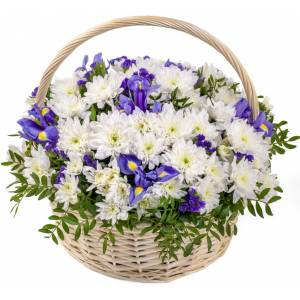 Сборная корзина ирисы и хризантемы R121