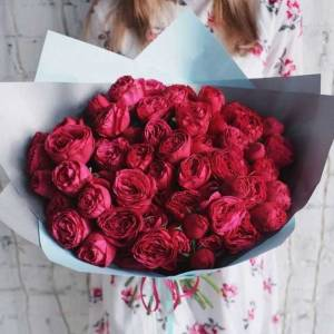 Букет 19 веток пионовидной розы в упаковке ъёъ R374