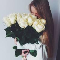 Букет 19 высоких белых роз с лентой R424